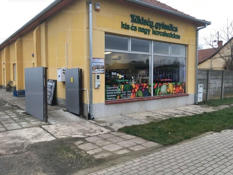 Mezőkovácsháza, Árpád utca 220.